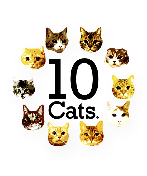 10cats
