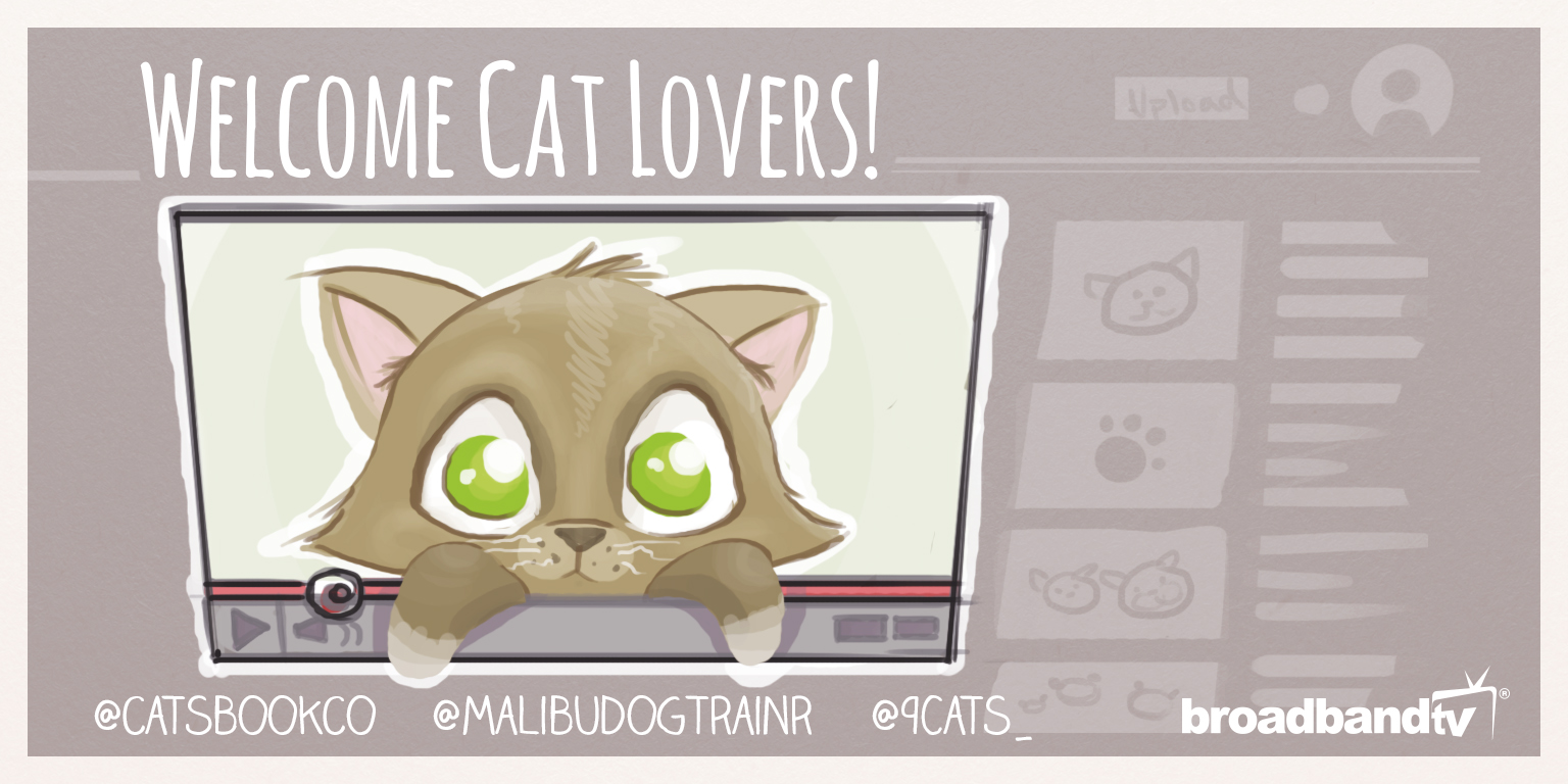 CatsTwitter In the Limelight: A Purrfect Friday With Cat Videos From BBTV Creators!