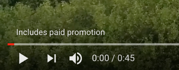 Paid Promotion YouTube Announces New Way To Ensure You're Being Transparent With Your Fans!